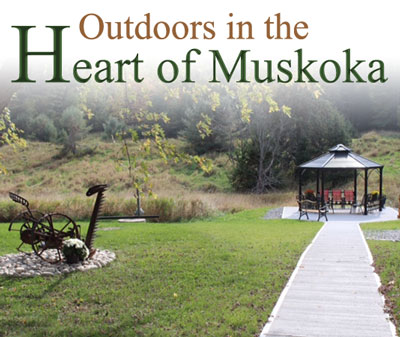 Outdoors in the Muskokas